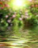 Powierzchnia Pluskotał wody i plamy natury tło Obraz Stock