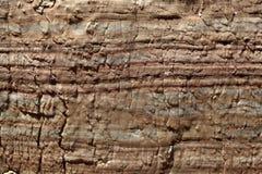 Powierzchnia węglan skała z wietrzenie strukturami fotografia stock
