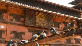 Powierzchowność dach piękna Hinduska świątynia Zewnętrzna architektura z złotymi elementami Hinduska świątynia w świetle słoneczn zbiory wideo