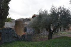 Powierzchowność Grands Therme skąpania dom Hadrian ` s willa, Tivoli zdjęcie royalty free