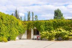 Powierzchowność przerastająca z winogradem zielony dom Zdjęcia Royalty Free