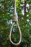 Powieszenia na drzewie zdjęcie royalty free