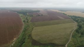 Powietrzna ankieta rolniczy pola w jesieni od copter zdjęcie wideo