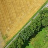 Powietrzna fotografia, rząd drzewa i, abstrakcjonistyczna powietrzna fotografia Obraz Stock