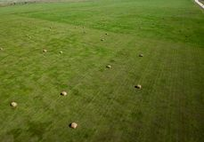 Powietrzna fotografia siano beli pole w Południowym Dakota rolnictwie zdjęcia royalty free