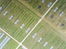 Powietrzna fotografia Wiejski turystyki rolnictwo w Xuancheng, prowincja anhui, Chiny fotografia royalty free