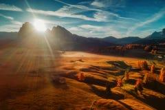 Powietrzna jesień wschodu słońca sceneria z żółtymi modrzewiami i małym alpi Zdjęcia Stock