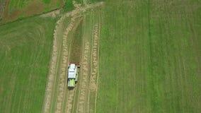 Powietrzna klamerka pszeniczny żniwo - combnine na pracie zbiory wideo