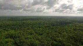 Powietrzna Mississippi wieś zbiory wideo
