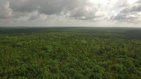 Powietrzna Mississippi wieś zbiory