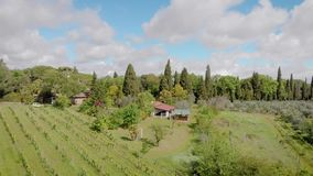 Powietrzna strzelanina piękny winnica w Włochy, Tuscany zdjęcie wideo