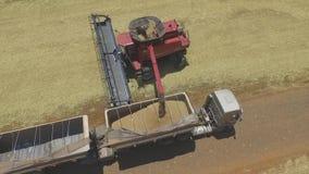 Powietrzna wizerunku flancowania ziaren kukurudzy banatka z ciągnikową maszyną zbiory wideo