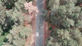 Powietrznego trutnia widoku roweru jeźdza ufna sportive jazda w lata miasta parku na bicyklu Jeździć na rowerze odtwarzający poję zdjęcie wideo