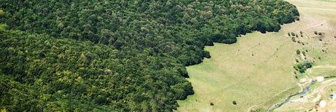 Powietrzny lasu krajobrazu widok Obraz Stock