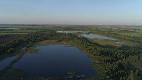 Powietrzny latanie nad błękitnymi jeziorami otaczającymi lasami zdjęcie wideo