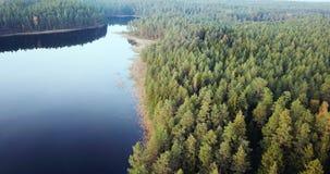 Powietrzny materiał filmowy las i jezioro, Wolno ono Ślizga się Nad wierzchołkami drzewa - Markotny wideo, Północno-wschodni Euro zbiory wideo