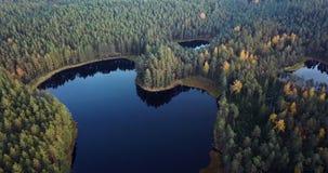 Powietrzny materiał filmowy las i jezioro, Wolno ono Ślizga się Nad wierzchołkami drzewa - Markotny wideo, Północno-wschodni Euro zdjęcie wideo