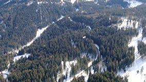 Powietrzny materiał filmowy las na wzgórzach z udziałami śnieg, 4k zbiory