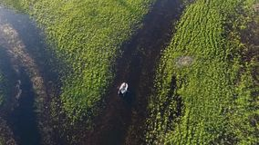 Powietrzny materiał filmowy: młodzi przyjaciele wiosłuje w łodzi przez rzekę HD slowmotion zbiory