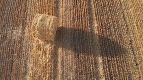 Powietrzny materiał filmowy pojedyncza round bela słoma na polu zbiory