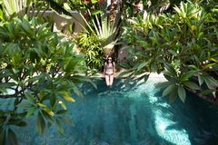 Powietrzny odgórny widok kobieta w bikini obsiadaniu relaksuje na krawędź pływackim basenie wśród palmy i drzew od above, tropika obraz stock