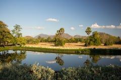 Powietrzny panoramiczny widok na greenfield i łąkach Tajlandia obraz royalty free