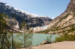 Powietrzny truteń Nigardsbreen lodowiec w Nigardsvatnet Jostedalsbreen parku narodowym w Norwegia w słonecznym dniu Obraz Stock
