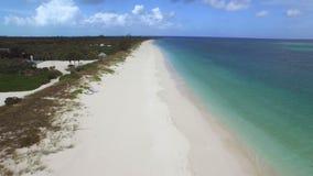 Powietrzny truteń piaskowata linia brzegowa zbiory wideo