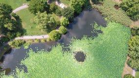 Powietrzny trutnia lot nad pięknym stawem wypełniał z wodnymi lelujami obrazy royalty free