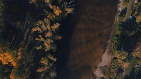 Powietrzny trutnia materiał filmowy Odgórnego widoku rzeka przy jesień zmierzchem zbiory