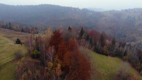 Powietrzny trutnia materiału filmowego widok: lot nad jesieni górą z lasami i polami Karpackie góry, Ukraina, Europa zbiory wideo
