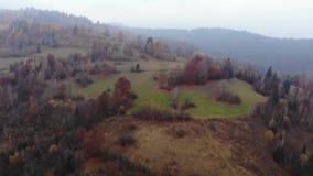 Powietrzny trutnia materiału filmowego widok: lot nad jesieni górą z lasami i polami Karpackie góry, Ukraina, Europa zbiory