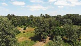 Powietrzny trutnia strzał zielony miasto park z dużymi drzewami i turystycznymi ścieżkami na słonecznym dniu z niebieskim niebem  zbiory