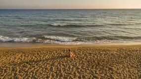 Powietrzny trutnia widok samotny mężczyzna relaksuje na spokojnej plaży tuż przed zmierzchem zdjęcia stock