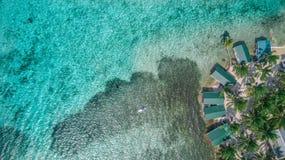Powietrzny trutnia widok Tabaczna Caye mała wyspa karaibska w Belize bariery rafie zdjęcia royalty free