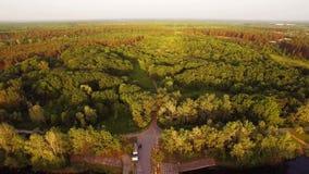 Powietrzny videography krajobrazu natury drzewo i rzeczny skrzyżowanie zbiory