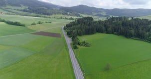 Powietrzny wideo autobahn przez zielonej łąki i lasu zbiory