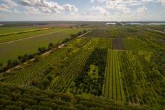 Powietrzny wizerunek farmy Floryda ziemia uprawna Zdjęcie Stock