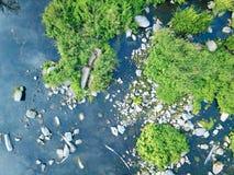 Powietrzny wizerunek rzeka i drzewa obrazy royalty free