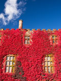 Stately Home Castle in Autumn Stock Photography