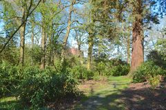 Powis castle. A wooded area with Powis castle in the background Stock Photos