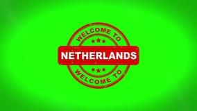 Powitanie holandie Podpisywać Stemplujący tekst Drewnianą Stemplową animację ilustracji