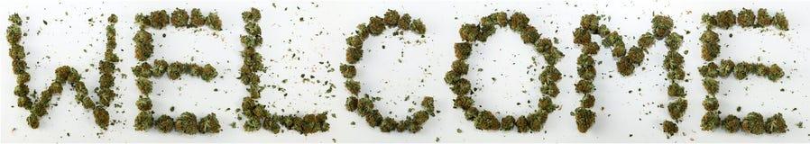 Powitanie Literujący Z marihuaną obrazy royalty free
