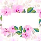 Powitanie obrazek dla MMS obrazka sztandaru wiosny kwitnie dla dnia eighth Marzec Zdjęcie Royalty Free