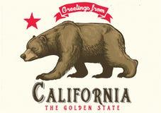 Powitanie od California z brown niedźwiedziem ilustracja wektor
