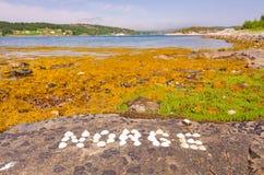 Powitanie w Norge Obrazy Stock