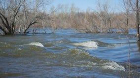 powodzi oka panoramy rzeki wiosna zbiory wideo