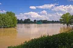 powodzi rzeka Vistula Obraz Royalty Free