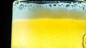 Powstający piwo bąble zbiory