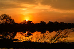 Powstający Słońce Fotografia Royalty Free